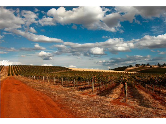 Hentley_Farm_Wines